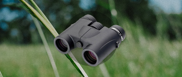 How to Choose the Correct Binoculars