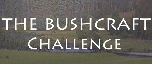 The Bushcraft Challenge – Survive from the Land for One Year